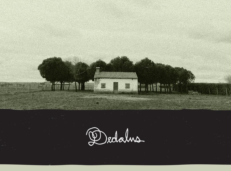 JDS_Dedalus_Footer_01